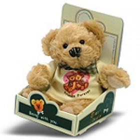 Friend Forever Bear (Boy)