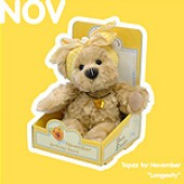 November Birthday Bear