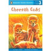 Penguin Young Readers - Cheetah Cubs
