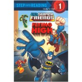 Step into Reading - DC Super Friends - Flying High